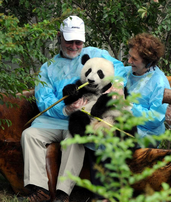 Best Chengdu Panda Tour