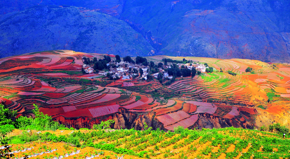 Kunming Attraction Travel China With Me